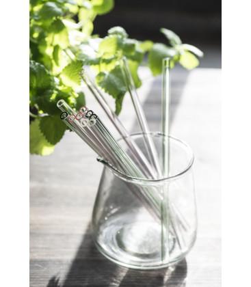 Lot de 6 pailles en verre avec brossette de nettoyage - Ib Laursen