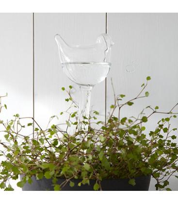 OLIVIA Verre d'irrigation plante - AFFARI